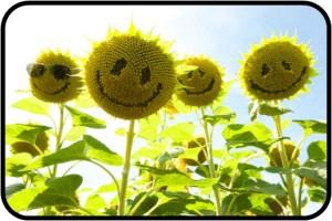 Smile_FII