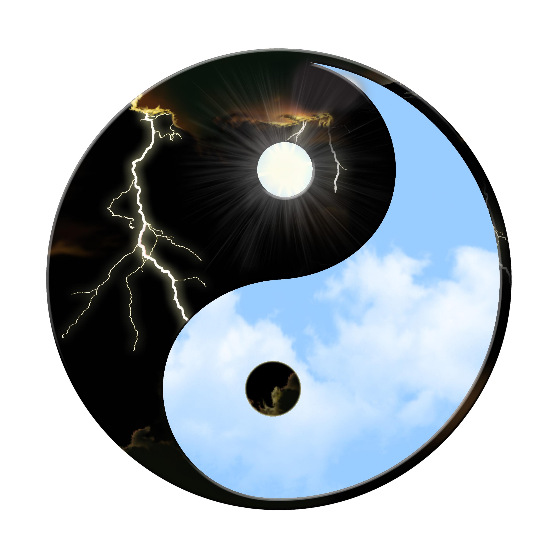 yin_yan_www.fiimplinit.ro