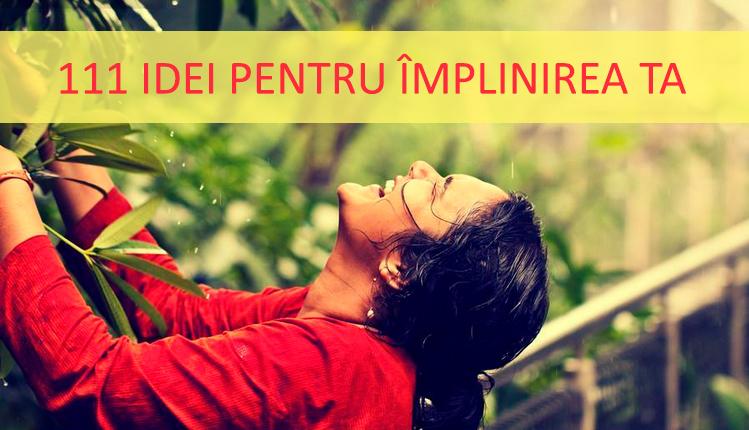 111_idei_implinirea_ta